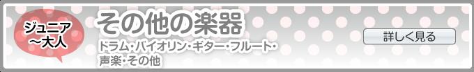 楽器・その他(ドラム・バイオリン・ギター・ベース・ホルン・フルート・チェロ・リラックスヨガ・その他)